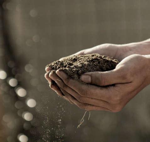 De l'intensif, à l'agriculture douce…